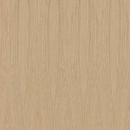 Nr. 2 ąžuolas radialinis pavyzdys